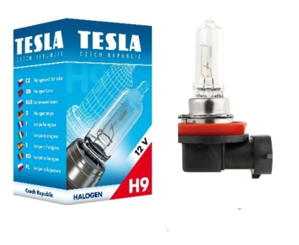 Лампа накаливания Tesla H9 B10901 1шт